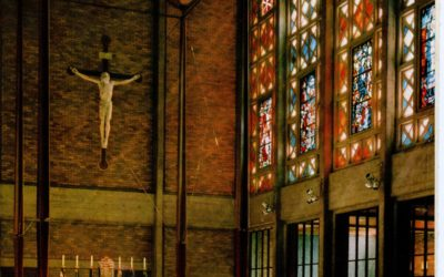 Synod Renewal Theme Reflection Resources