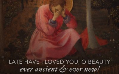 22nd SUNDAY OF ORDINARY TIME Year C