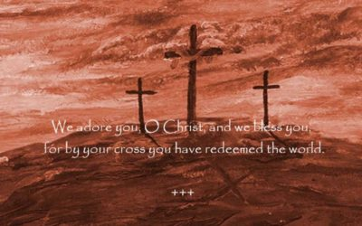 2019 24th Sunday Ordinary Time Year C